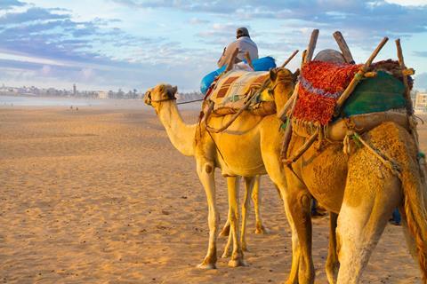 afbeelding 8 daagse cruise Canarische Eilanden met Agadir