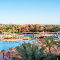 afbeelding TUI MAGIC LIFE Sharm el Sheikh