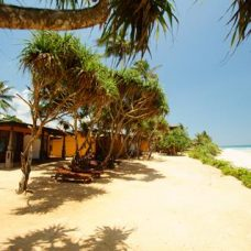 afbeelding The Beach Cabanas