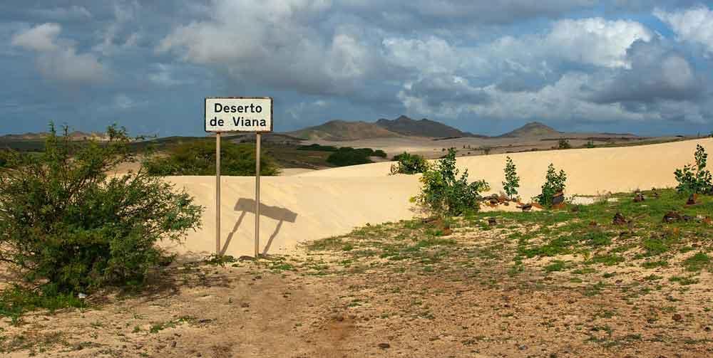 Kaapverdië Peruviana woestijn